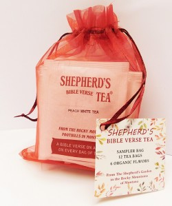 Bible Verse Sampler Bag - 12 Tea Bags